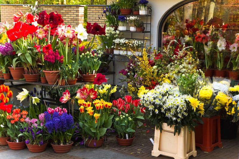 Sector Spotlight: Florists graphic